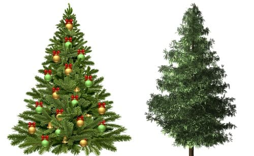 albero di natale naturale o artificiale